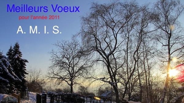 Bonne année Montessori 2011 !