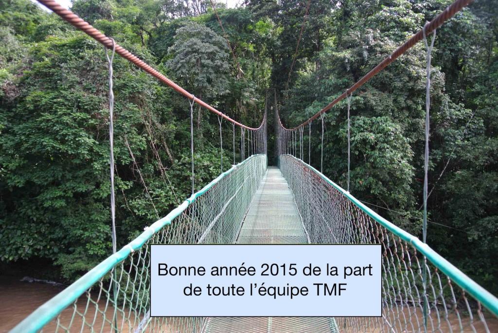 BA 2015 TMF
